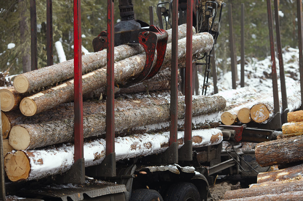 Logging company using a red crane to move logs